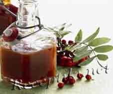 Напиток из рябины «Лесной»