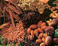 Терпуг, сушеные фрукты - экологически безопасные свежие продукты